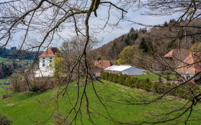 Heiraten im Festzelt von Zelt Zürich